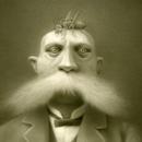 Аватар Усатый мужчина с кузнечиком на голове