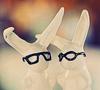 Аватар зайцы в очках