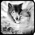 Аватар Волки