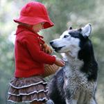 Аватар Красная шапочка и волк (© Anatol), добавлено: 16.01.2011 17:39