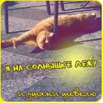 99px.ru аватар Я на солнышке лежу и ушами шевелю