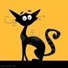 Аватар Черный кот с выразительными глазами на крыше