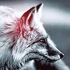 Аватар Лиса в черно-белых тонах (© Радистка Кэт), добавлено: 30.03.2011 03:47
