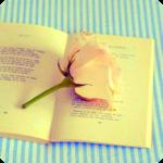 Аватар Роза на книге