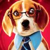 Аватар Бигль Лу из фильма 'Кошки против собак: месть Китти Калор'