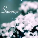 Аватар Очень красивые белые цветы (Summer)