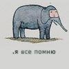 Аватар Слон с фразой( я всё помню)
