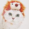 Аватар Кот в шапочке ёжика