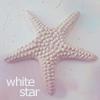 Аватар Морская звезда (White Star)