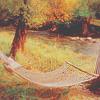 Аватар Гамак висит между деревьями над рекой