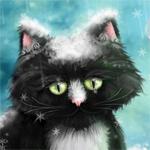 Аватар Черно - белый котенок и снежинки