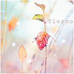 Аватар Хрупкое растение (Tierno)