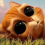 Аватар Кот в сапогах из мультфильма Шрек / Shrek