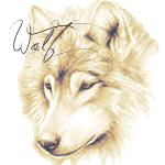 Аватар Рисунок волчицы (Wolf)