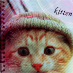 Аватар Котенок в шапке (Kitten / Котенок)