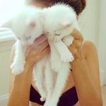 Аватар Девушка держит в руках двух белых котят
