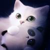 Аватар Белый котик держит в лапках игрушку в виде панды