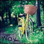 Аватар Велосипед с корзинкой стоит на лесной тропинке (Way)