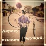 Аватар Мужчина идёт по дороге, неся на спине велосипед (Дорогу осилит идущий..)