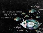 Аватар Множество рыб (Не бойся плыть против течения)