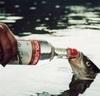 Аватар Рыбу поют водкой из бутылки