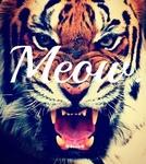 Аватар Морда тигра с надписью Мяу (Meow)