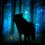 Аватар Черный волк в ночном лесу