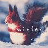 Аватар Белка сидит на снегу (Winter / Зима)