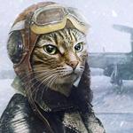 Аватар Кот-пилот самолета