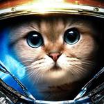 Аватар Кот в космическом скафандре