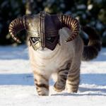 Аватар Каджит / Khajiit из игры Скайрим / Skyrim идет по снегу в шлеме с рогами