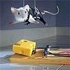 Аватар Мышонок в костюме спецагента спускается вниз на канатах за сыром в мышеловке