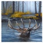 Аватар Олень с большими ветвистыми рогами плывет по реке, затопившей лес при половодье