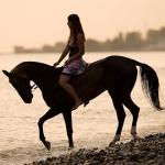Аватар Девушка верхом на лошади едет по берегу залива