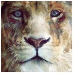 Аватар Морда льва
