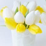 Аватар Тюльпаны белые и желтые в вазе