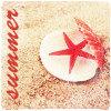 Аватар Открытая раковина моллюска с морской звездой лежит на песке(summer)