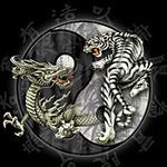 Аватар Битва дракона с тигром
