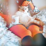Аватар Девушка сидит на кровати с кошкой на коленях и чашкой в руке