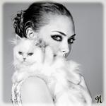 Аватар Американская актриса, певица и бывшая модель Аманда Сайфред / Amanda Seyfried с белой кошкой на руках