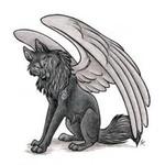 Аватар Волк с ангельскими крыльями
