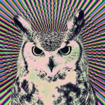 Аватар Сова на абстрактном фоне