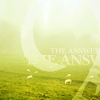 Аватар Луг, на котором пасутся овечки, окутанный утренним туманом (The Answer / Ответ)