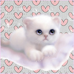 99px.ru аватар Белый, пушистый котенок смотрит грустно вверх на фоне маленьких розовых сердечек