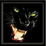 Аватар Черная пантера со светящейся пастью