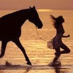 Аватар Девушка с лошадью бежит по берегу моря