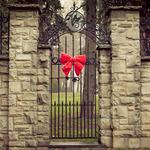 Аватар Красный бантик на готических воротах