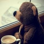 Аватар Игрушечный медведь сидит с чашкой кофе и смотрит в окно