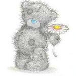 Аватар Мишка Teddy держит ромашку