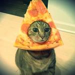 Аватар Морда кошки в кусочке пиццы